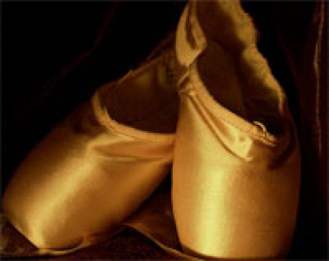 Elizabeth School Of Dance